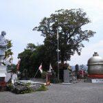 鹿児島県出水市のおすすめ観光スポット5選。旅行が楽しめる市内の名所情報