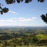 自然が作り出した大草原!オーストラリア「アサートン高原」について