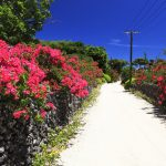 冬こそ沖縄に行くべき 5つの理由