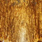 東北のおすすめイルミネーションイベント7選☆キラキラ輝く雪の街☆