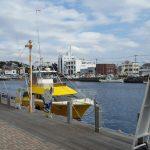 三崎港に行ったらここがおすすめ。観光スポット21個のまとめ