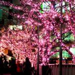 東海道の旅人になったつもりで訪れたい♪丸子・宇津ノ谷は風情たっぷり