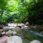 増富温泉の宿・旅館7選。おすすめのぬるいお湯にゆっくり浸かろう。