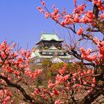 梅の名所は京都だけじゃない!関西地方でおすすめ観梅スポット7選【2016年版】