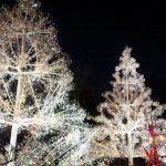 冬でも楽しめる!箱根のおすすめ観光スポット6選