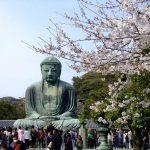 鎌倉の居酒屋おすすめ15選!鎌倉に訪れたら行ってみよう!