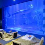こたつでくつろぎながら魚を眺める癒しの時間。「こたつde水族館」が期間限定で開催中!