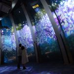 水族館がお花畑に!?春花火も見られる「横浜・八景島シーパラダイス」が激アツなう!