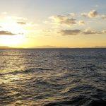 淡路島の極ウマ海鮮丼でランチ♪しらすにふぐまで!おすすめ店7選で教えます!