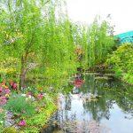 リアル都会のオアシス!幻想的な「モネの池」が西武池袋の屋上に広がっていたなんて!
