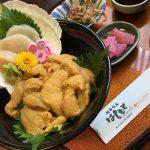リピーター多し!絶品ウニの贅沢盛り「キラキラうに丼」は夏だけの限定品!