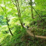 ラベンダーの時期以外も素敵♪北海道・ファーム富田の魅力に迫ります!