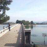 福岡市中心の水景公園!福岡にある「大濠公園」の魅力
