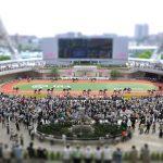 家族もカップルも楽しめる!?馬のテーマパークみたいな阪神競馬場がおもしろい!