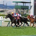 競馬ファンも馬好きも一度は行きたい!JRA栗東トレーニングセンター見学ツアー