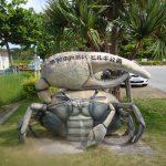 マングローブ観察が楽しめる!沖縄県にある「東村ふれあいヒルギ公園」の魅力
