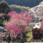 関東で観光列車に乗りたい!関東地方で乗れる観光列車5選
