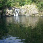 マイナスイオンがたっぷり!沖縄県にある「タナガーグムイ」で自然を満喫する