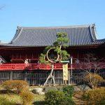 【150年ぶり】月の松が復活!東京・上野の「寛永寺清水観音堂」が話題沸騰中!