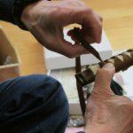 人気急上昇中のゲーム「刀剣乱舞」で注目集める刀剣!備前長船刀剣博物館で日本刀と武士に思いを馳せたい!