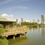 汐留駅周辺には汐留タワーも!東京にある「汐留駅」の調べておきたい基礎知識6個