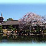 浅草寺の中で最も古い建物!東京の浅草にある「伝法院」とは