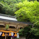 京都と若狭を結ぶ大事な道!周辺観光スポットも気になる「鞍馬街道」について