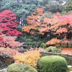 心が落ち着く写経ができる!京都にある「髄心院」の写経・写仏体験について