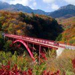 歴史、収穫の秋、どちらも堪能できる♪山梨県のおすすめの9~10月開催の秋祭り5選