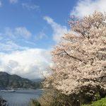 愛媛・八幡浜の潮風を感じる展望台♪八幡浜の愛宕山公園を紹介します!!
