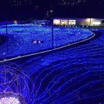春・夏の光の王国【ハウステンボスのイベント解説】
