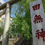 【東京・西東京市】田無神社はどんなところ?行く前に知っておきたい基本情報
