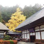 安楽寺は長野県最古の寺!国宝も見られる!