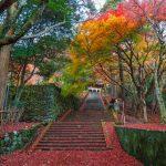 島根の紅葉の名所16選。出雲大社を参拝した後は、紅葉狩りに出かけよう♪