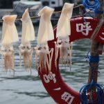 佐賀県にある呼子町に行ったら買いたいおすすめなお土産5選
