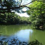神奈川の秦野市の観光スポット8選。市内めぐりを楽しめるおすすめを紹介