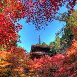今年の秋は滋賀県へ紅葉狩りに行こう!滋賀県の紅葉の名所6選