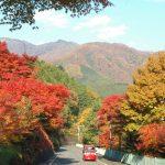 紅葉も美しい!歴史と自然と癒しの四万温泉お勧めスポット