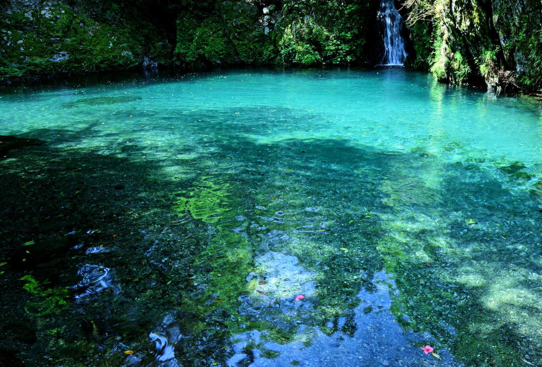 日本一の水質!時間帯で色が変わる「仁淀ブルー」の滝つぼが ...