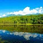 日本屈指の貴重な景観!暑い夏は北海道の世界遺産・知床を満喫しよう!