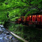 京都を日帰りで楽しむならこれ!京都市内発の日帰りツアーで京都を満喫