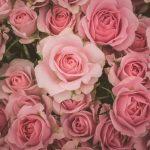 恵比寿で誕生日サプライズが出来るお店25選。記念日は素敵なところでデートしましょ♪