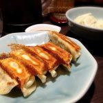 宇都宮で餃子やコスパがいい激うまランチ32選。