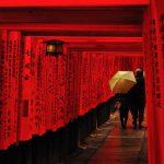 京都のおすすめ名所観光スポット、20個厳選しました。