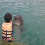 沖縄ならではの遊びができる!沖縄県にある「もとぶ元気村」の魅力