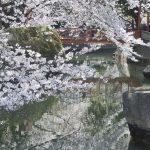 【東京】暑い夏に子供が喜ぶ公園「横十間川親水公園」に家族で行こう