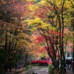 静岡観光のおすすめスポット60ヶ所。定番から穴場まで総まとめ!