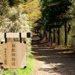 箱根観光のお勧めスポット54ヶ所まとめ。日帰りじゃ全然足りない人はコレをチェック!