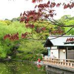鎌倉デートでならココに行こう!25のデート・グルメスポットまとめ